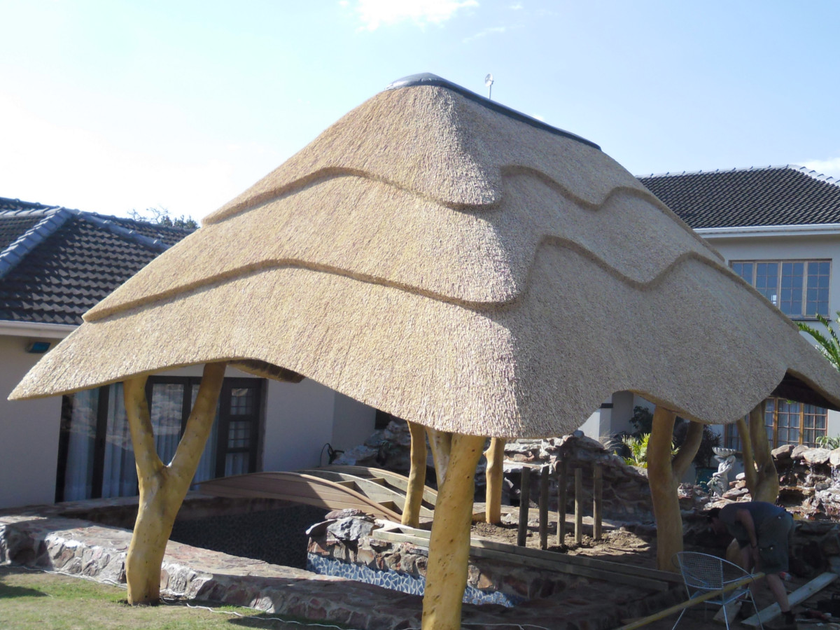Large Thatch Lapa with tree supports
